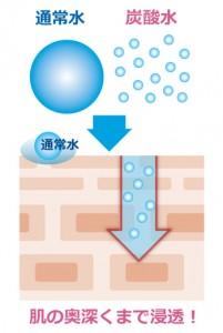 炭酸 水 浸透率の違い