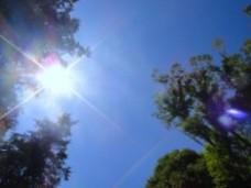 睡眠ダイエット 太陽の光