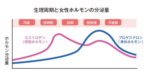 生理周期と女性ホルモンの分泌量