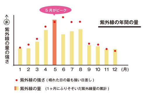 紫外線の年間の量