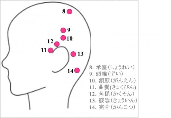 発毛 ツボ 側頭部