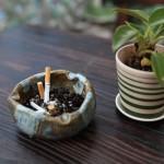 乾燥肌 食べ物 タバコ