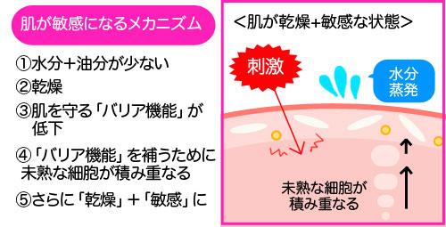 乾燥肌_敏感肌05