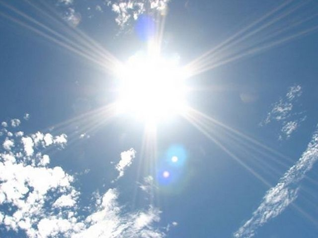 ホホバオイル 効果 直射日光