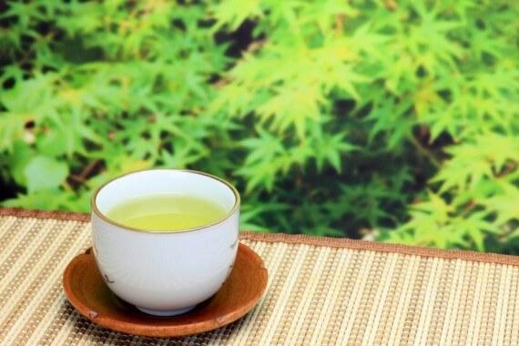 免疫力を高める食べ物 お茶