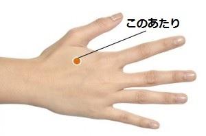親指の付け根