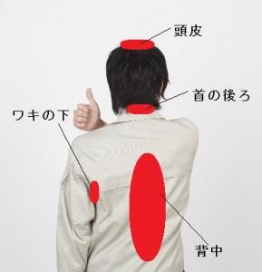 柿渋石鹸2re