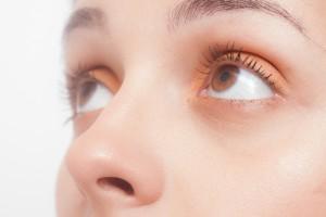 女性 鼻 目