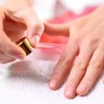 放置厳禁!爪の乾燥にオススメの保湿アイテムと予防法
