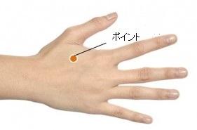手のポイント