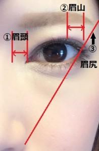 眉 プロポーション