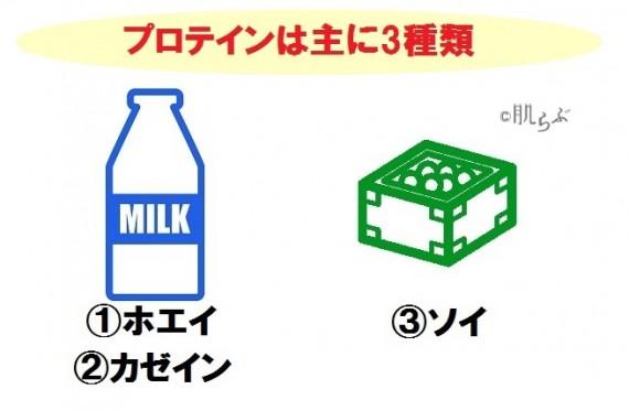 プロテイン種類