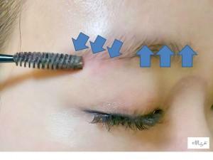 眉毛の毛流を整える画像
