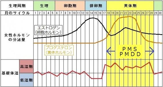 PMS・PMDD図