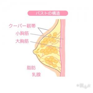 胸 小さく する方法