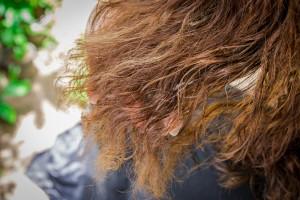 髪の毛 チリチリ (1)