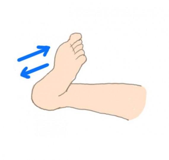 足首曲げ伸ばし