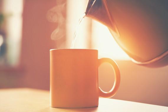プーアル茶 効果 栄養 成分