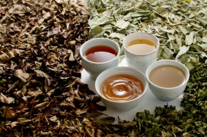 ダイエット お茶 ランキング 口コミ おすすめ 種類 市販 効果