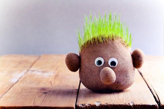 育毛剤 おすすめ ランキング 薄毛 抜け毛 脱毛 効果 頭皮ケア ハゲ