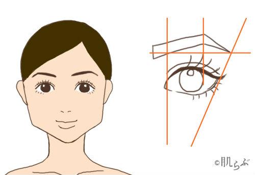 四角形顔 眉毛