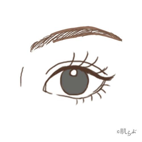 眉毛 縁取り画像