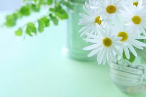 洗顔 おすすめ 方法 ランキング