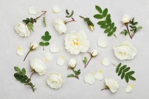 美白美容液 選び方 ランキング おすすめ 効果 口コミ