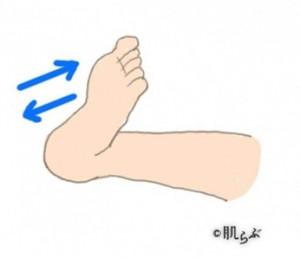 足首曲げ伸ば (2)