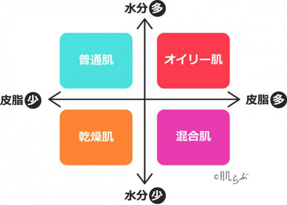 スキンケア 基本 肌質表