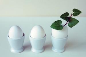 卵 乾燥肌 食べ物 即効性 レシピ 油 改善