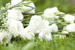 オールインワンゲル ランキング 美白 おすすめ スキンケア化粧品 美容成分
