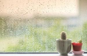 保湿化粧水 おすすめ ランキング 人気 効果 市販 ドラッグストア プチプラ メンズ 30代 50代