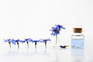 乾燥肌 化粧水 ランキング おすすめ 市販 通販 保湿成分 スキンケア