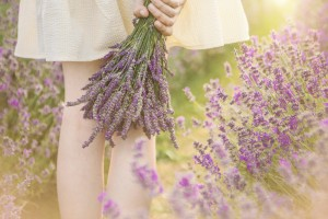 紫 チーク おすすめ パープル 使い方 ラベンダー
