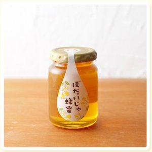 長坂養蜂場 国産ぼだいじゅ蜂蜜