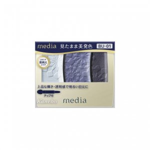 メディア グラデカラーアイシャドウ bu-01 ブルー アイシャドウ 水色 ネイビー