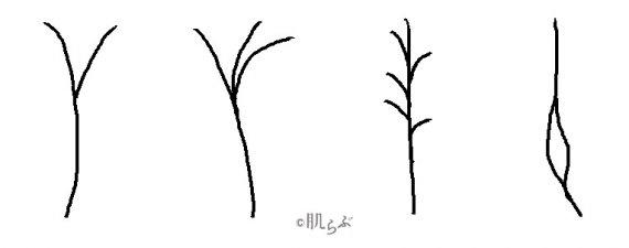 枝毛 種類 イラスト