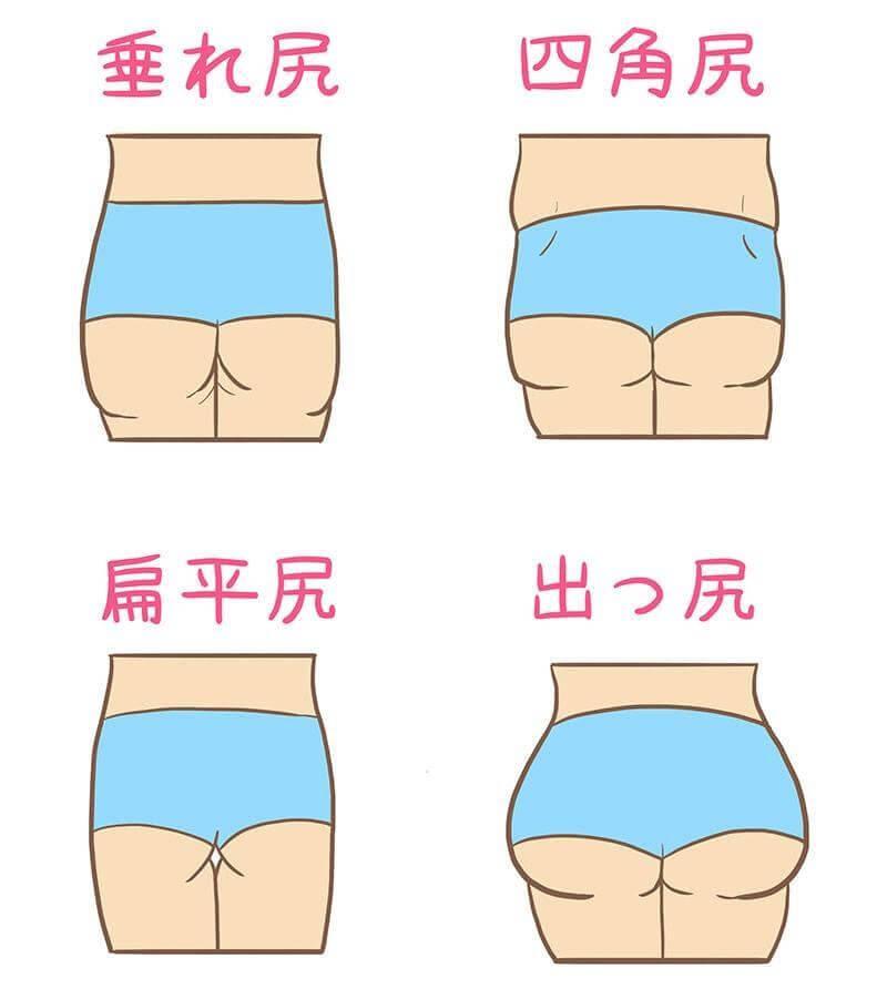 日本人のお尻の形の図解