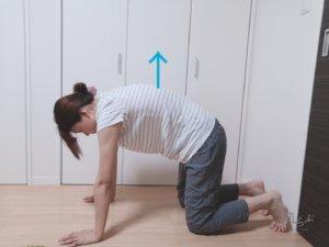 息を吸いながら背中を丸め、お腹を上に引き上げるた状態で呼吸をしながら20秒キープする